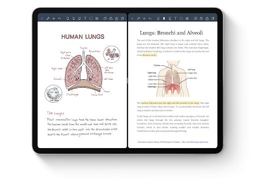 Best Note Taking app for iPad for college students